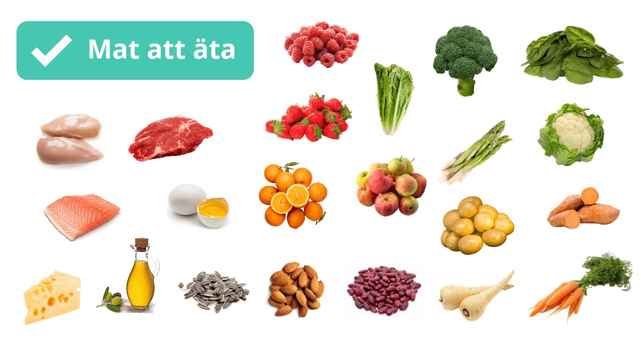 Grönsaker, frukt, bär, kött, frön, bönor, mjölkprodukter, ägg och fisk