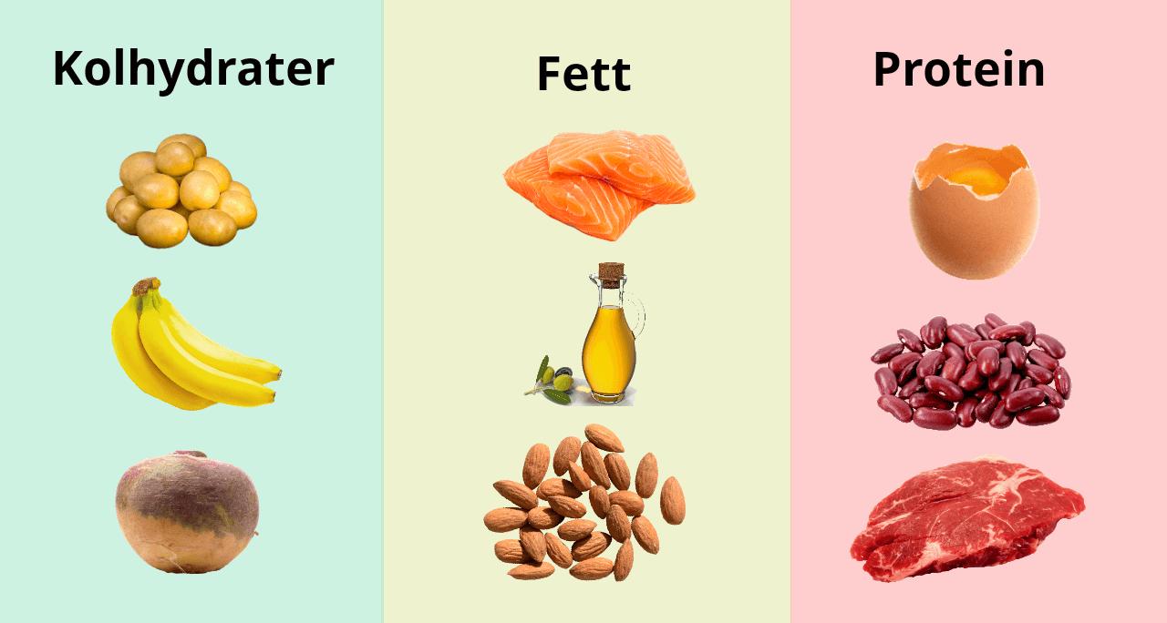 Makronäring: Kolhydrater, fett protein