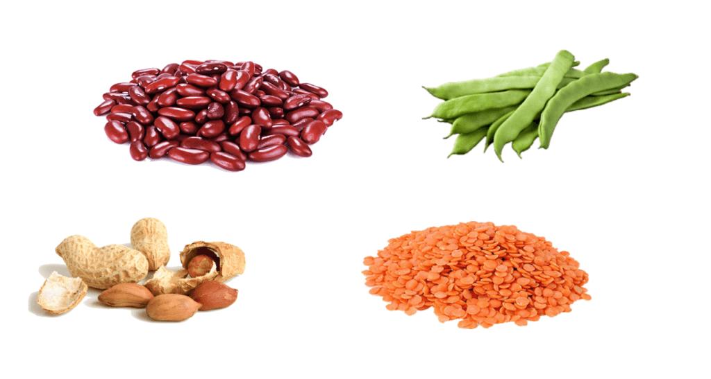 Gröna Bönor, kidneybönor, linser och jordnötter