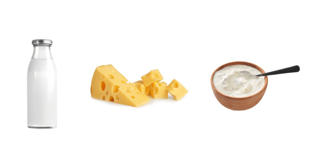 Mjölk, ost, yoghurt